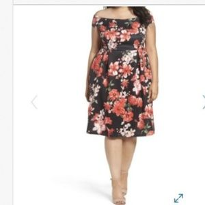 DOROTHY PERKINS Floral Fit & Flare Dress NWT